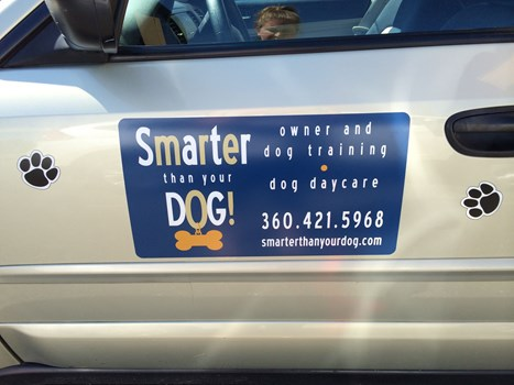 - Vehicle Graphics - Ready To Apply Graphics - Smarter than your Dog - Anacortes, WA